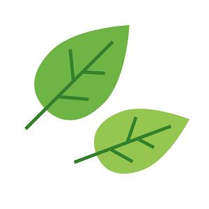 simple_leaf